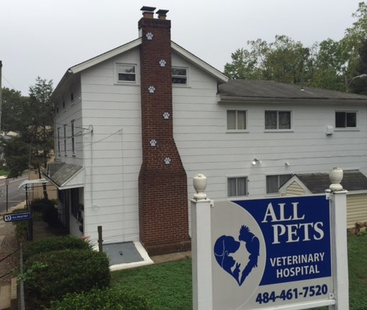 About – All Pets Veterinary Hospital